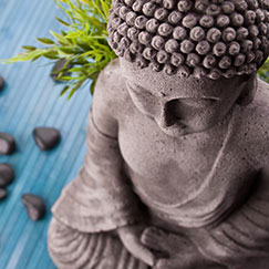 lingam massage stockholm wellness spa